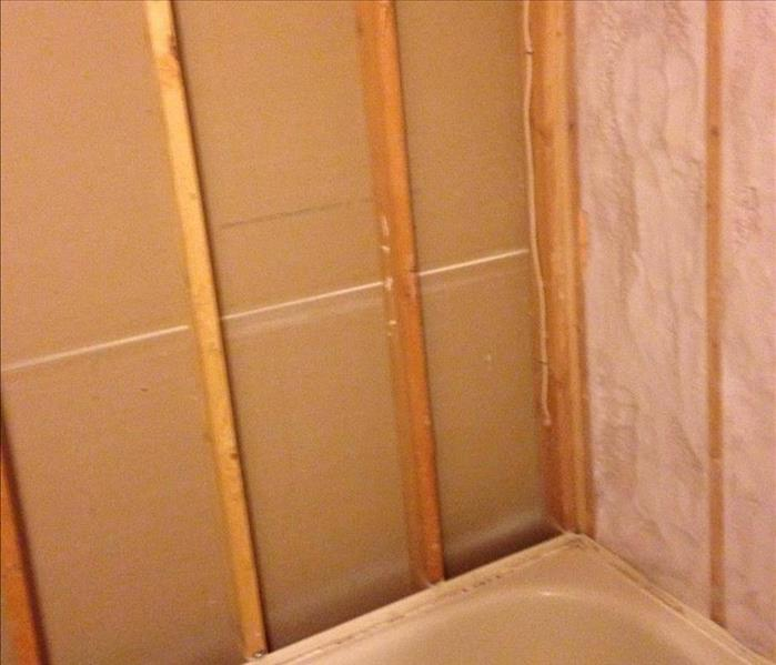 Sparta Mold Damaged Tub Enclosure After