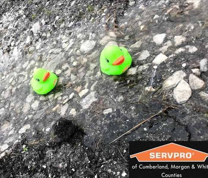 2 small toy green servpro ducks on surface with logo