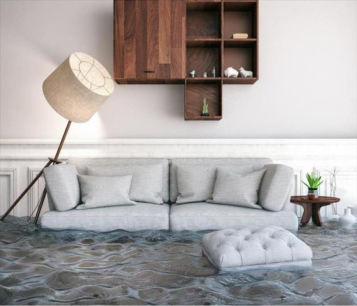 Water Damage Why Using the Right Equipment Counts During Water Removal in Sparta