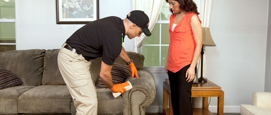 Crossville, TN carpet upholstery cleaning